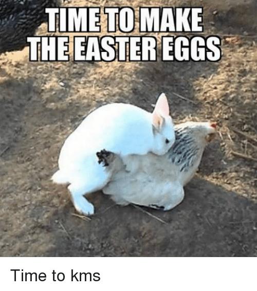 Easter Egg Meme